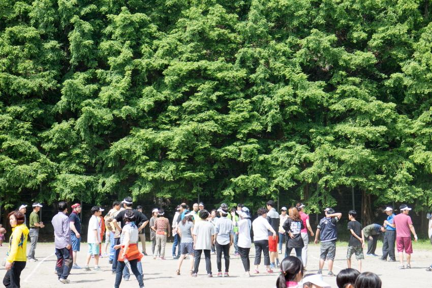 camp2IMG_3062.jpg