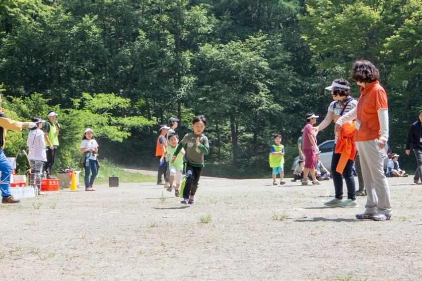 camp2IMG_3308.jpg